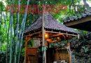 Meneguk Hangatnya Wedang Rempah di Situs Patirtaan Ngawonggo